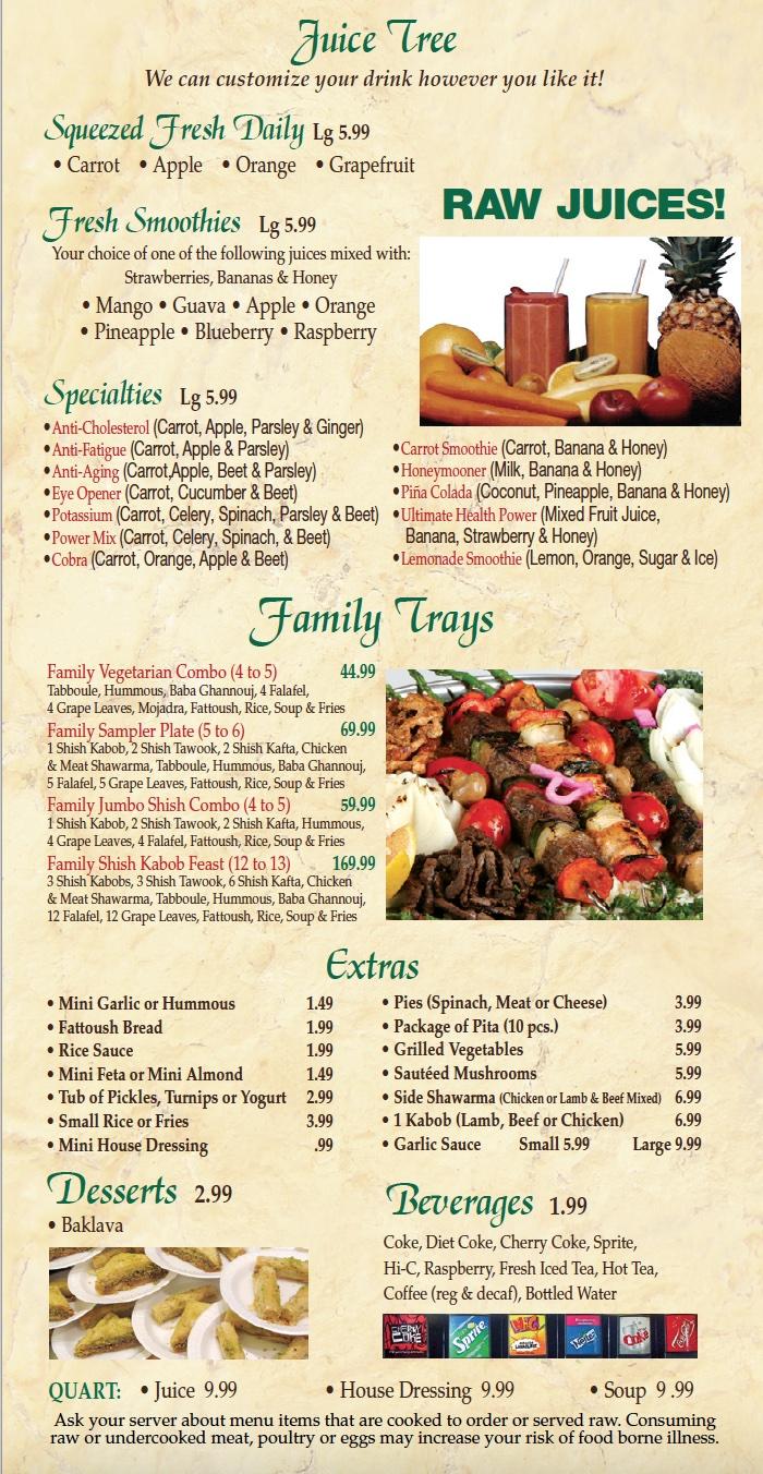 shish-kabob-express-menu-page2-500x976